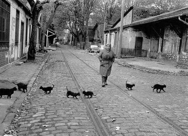 DOISNEAU-2127-Les-chats-de-Bercy-Paris-1974