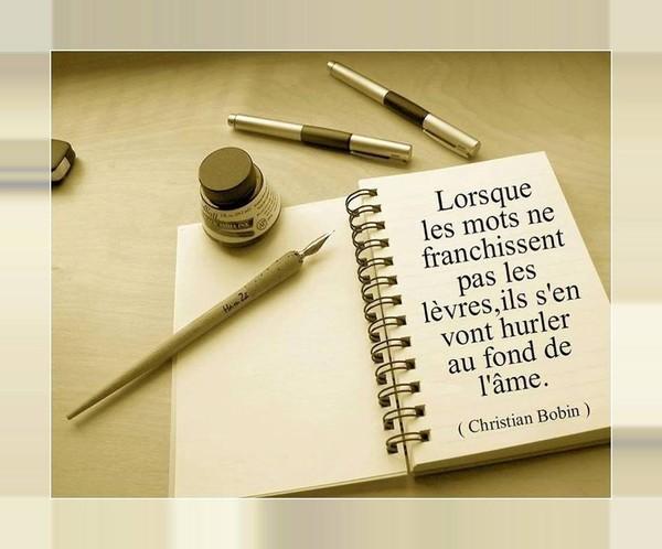 CITATION DE CHRISTIAN BOBIN
